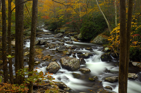 Little Pigeon River in Autumn at Great Smoky Mountains National