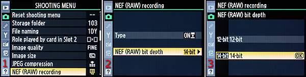 Figure 2 – Selecting 12- or 14-bit RAW color depth