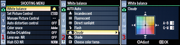 Figure 2 – Manual white balance with Shooting Menu screens