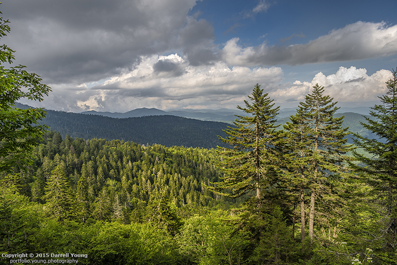 A scenic view of the Great Smoky Mountains from just below Clingman's Dome. This is in North Carolina looking back into Tennessee. RAW to JPEG conversion. Nikon D810, AF-S Nikkor 24-70mm f/2.8 G ED lens.
