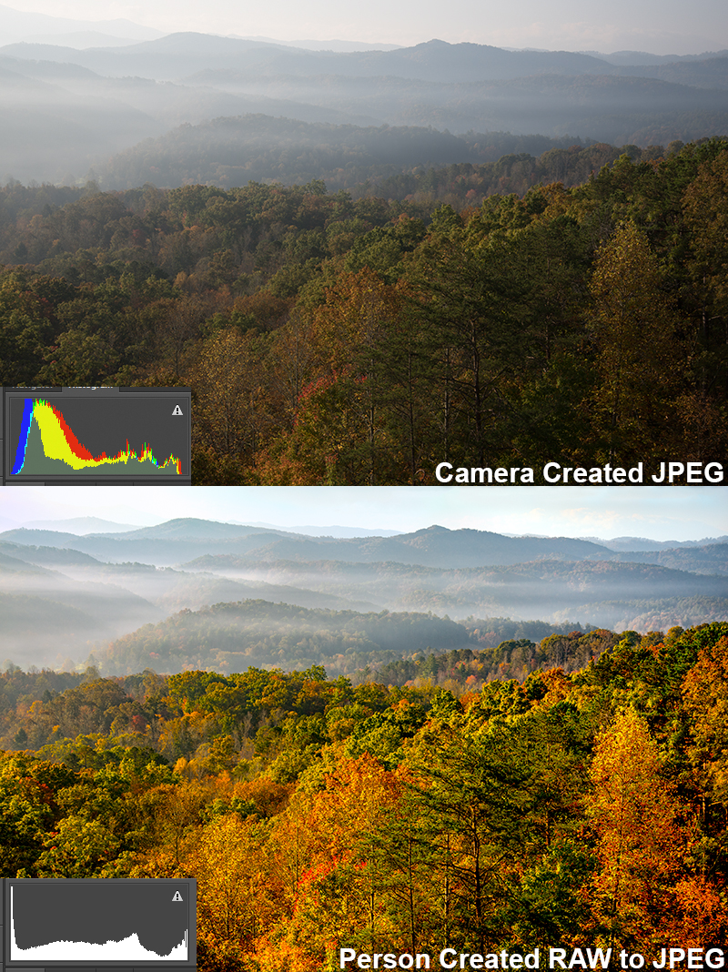 Camera-created JPEG vs. Person-created (me) JPEG from a RAW file.