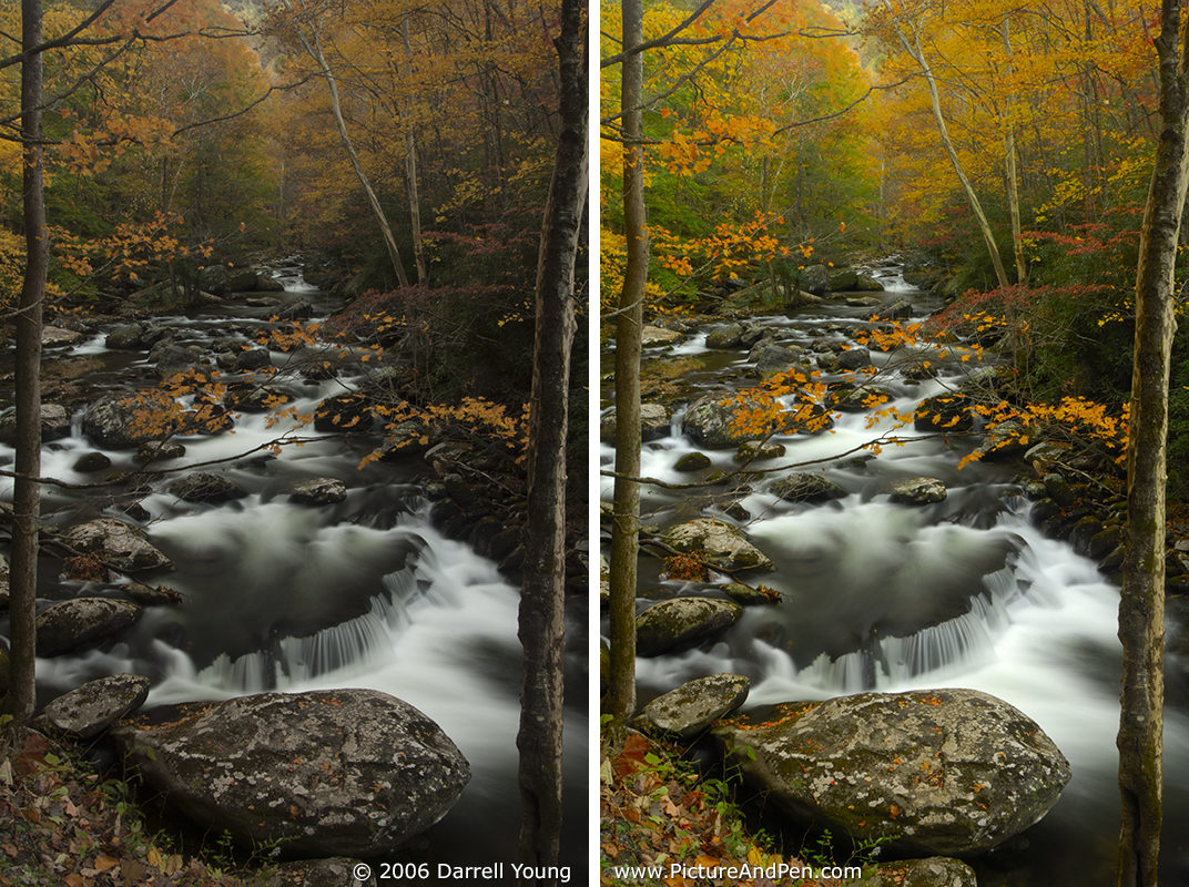 SOOC JPEG on left, RAW conversion JPEG on right